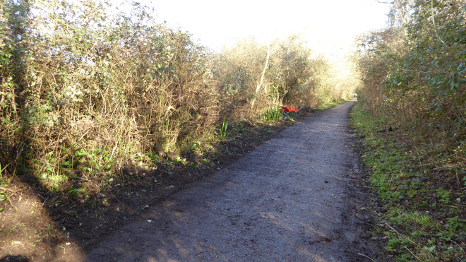 Path is shrinking due to mud and vegetation