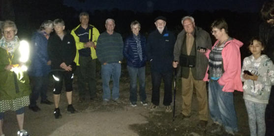 Friends of Centurion Way participating in bat walk